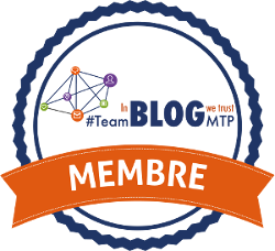 badge membre teamblogv2 sansfond 250x228